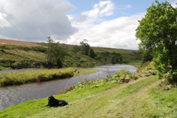 Relaxing at the river Deveron