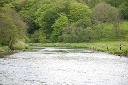 Corniehaugh, Island Pool, River Deveron